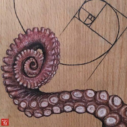 Octopus Leg ( Magic of Fibonacci )