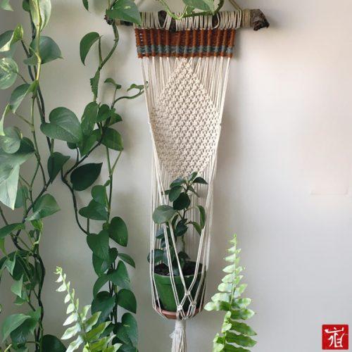 Diamond hanging planter by ladan.me